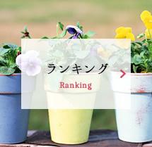 ランキング Ranking
